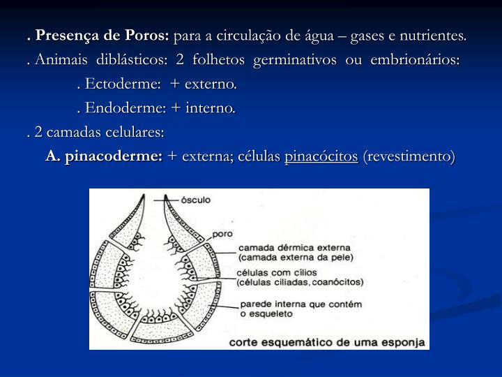 . Presença de Poros: