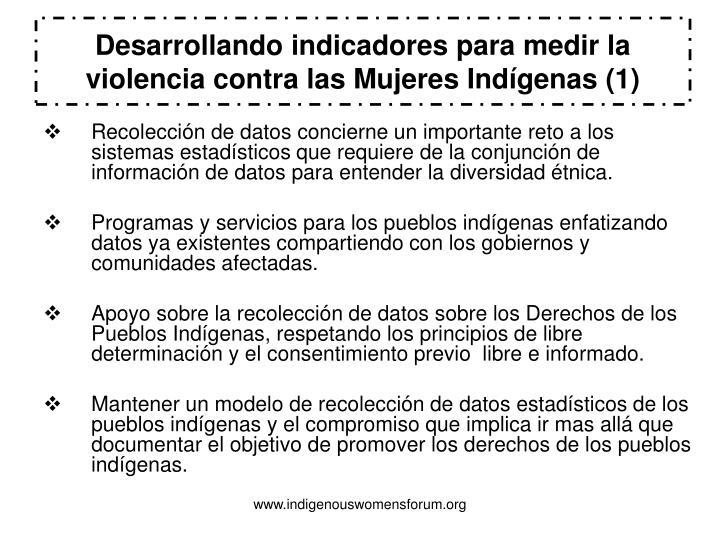 Desarrollando indicadores para medir la violencia contra las Mujeres Indígenas (1)