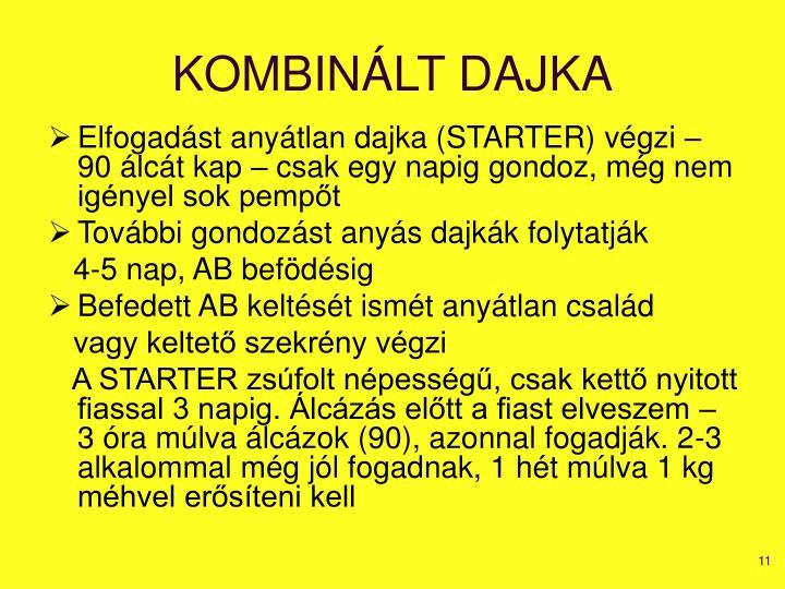 KOMBINÁLT DAJKA