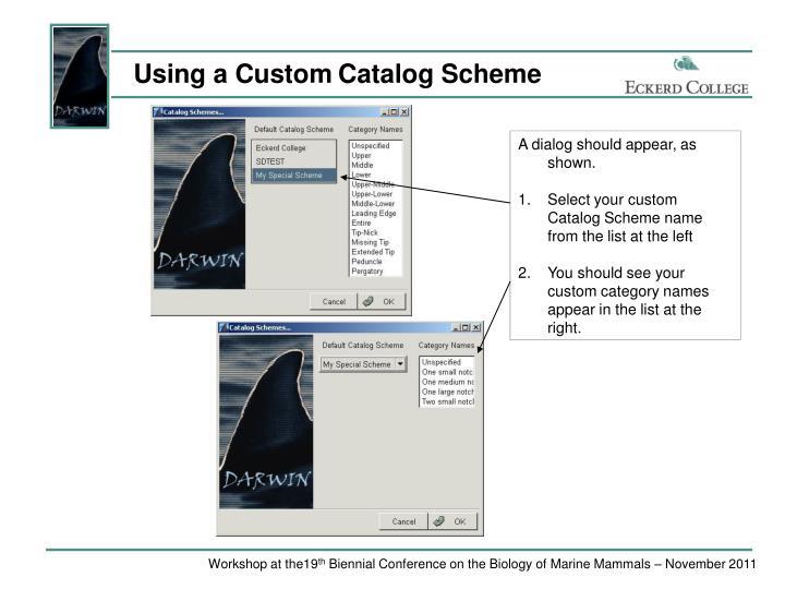 Using a Custom