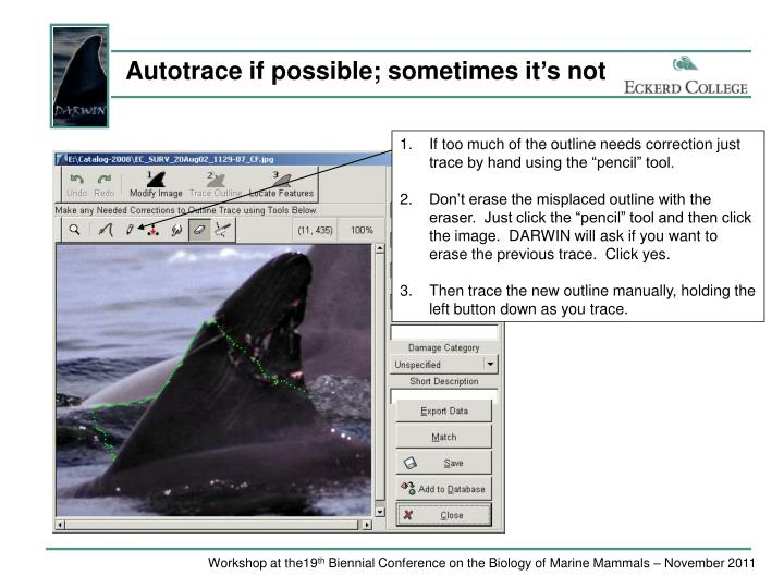 Autotrace if possible; sometimes it's not