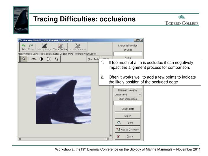 Tracing Difficulties: occlusions