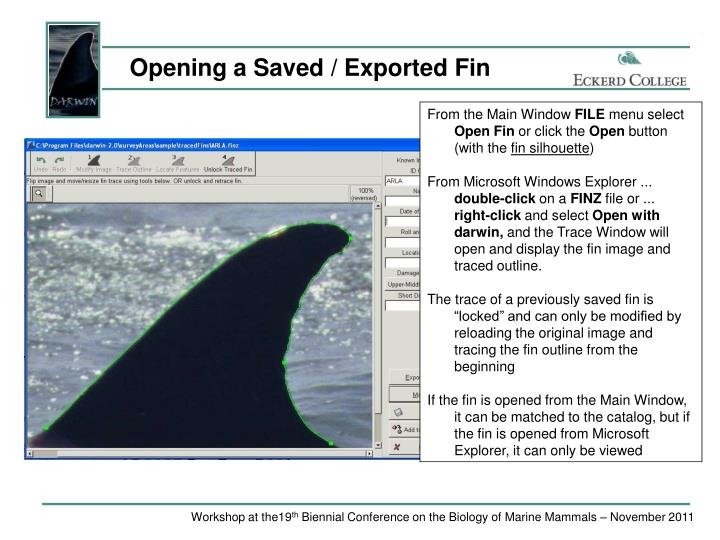 Opening a Saved / Exported Fin