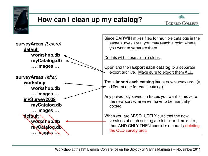 How can I clean up my catalog?
