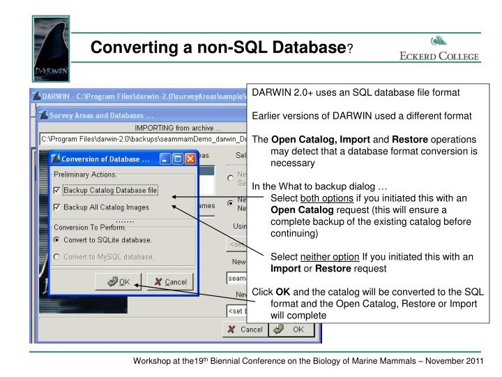 Converting a non-SQL Database