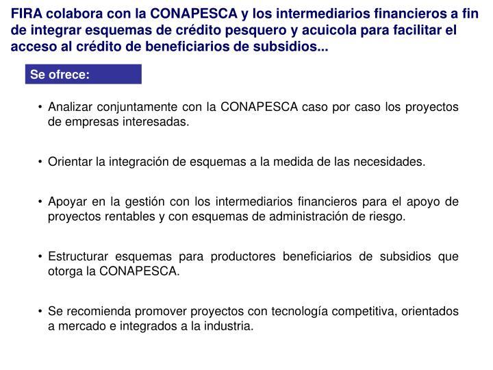 FIRA colabora con la CONAPESCA y los intermediarios financieros a fin de integrar esquemas de crédito pesquero y acuicola para facilitar el acceso al crédito de beneficiarios de subsidios...