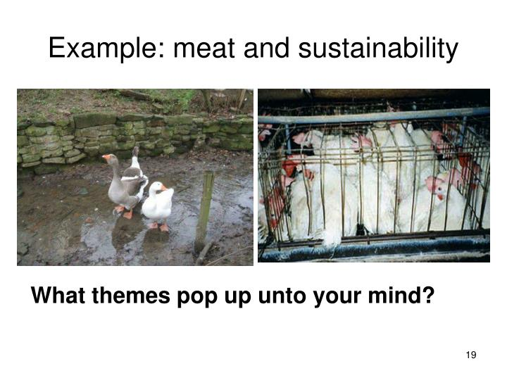 Example: meat and sustainability