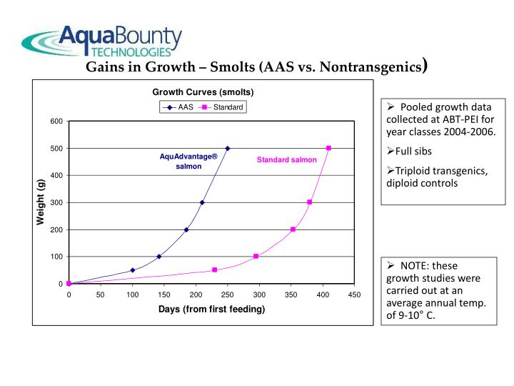 Gains in Growth – Smolts (AAS vs. Nontransgenics