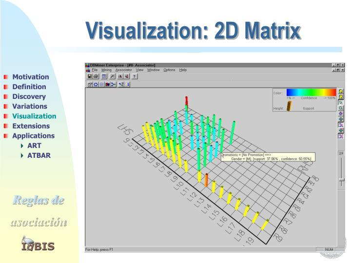 Visualization: 2D Matrix