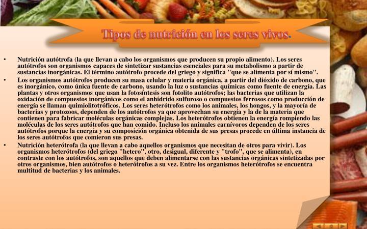 Tipos de nutrición en los seres vivos