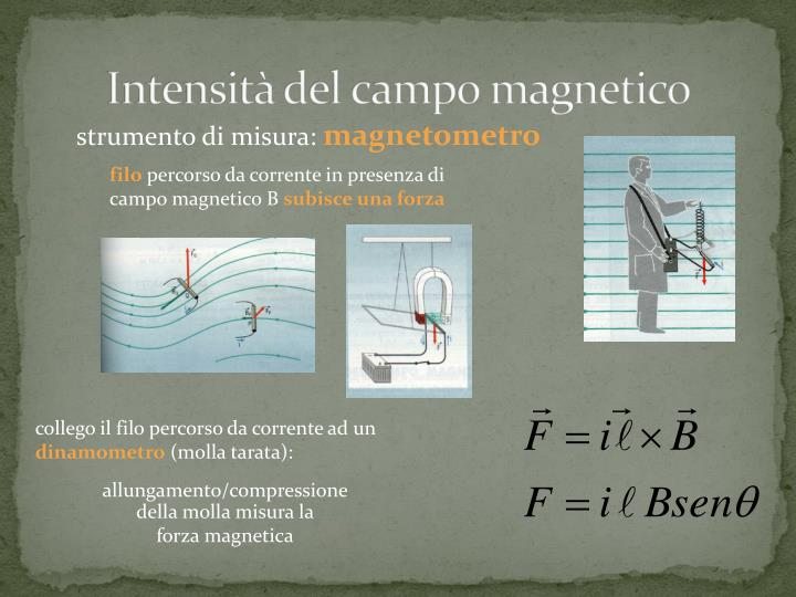 Intensità del campo magnetico