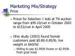 marketing mix strategy price