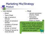 marketing mix strategy product