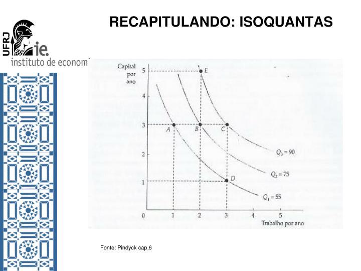 RECAPITULANDO: ISOQUANTAS