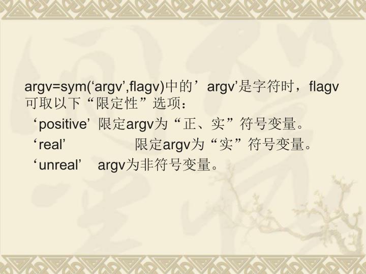 argv=sym('argv',flagv)