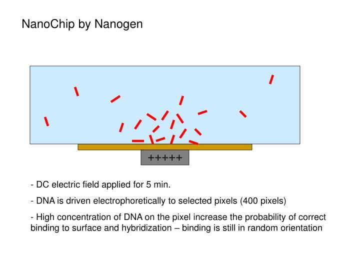 NanoChip by Nanogen