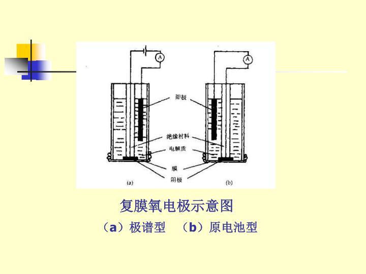 复膜氧电极示意图