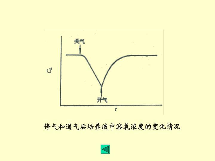 停气和通气后培养液中溶氧浓度的变化情况