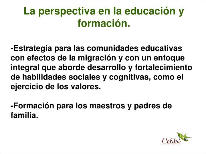 La perspectiva en la educación y formación.