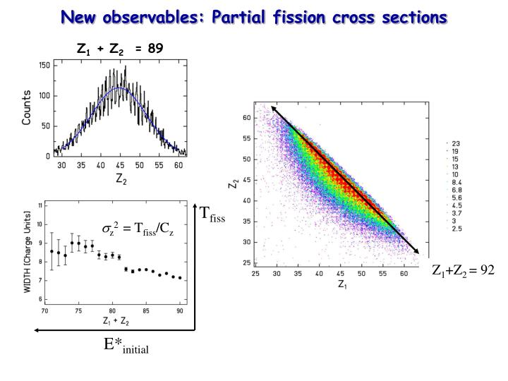 New observables: Partial fission cross sections