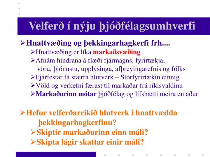 Velferð í nýju þjóðfélagsumhverfi