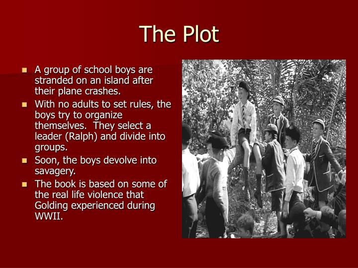 A group of school boys are stranded on an island after their plane crashes.