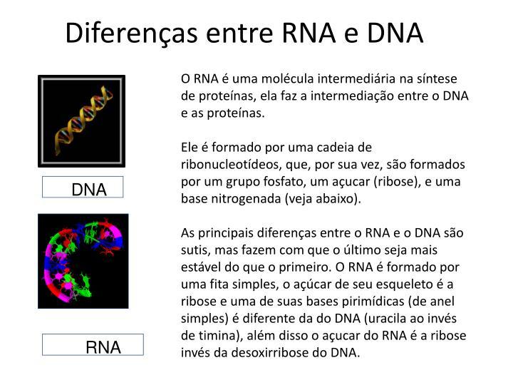 Diferenças entre RNA e DNA