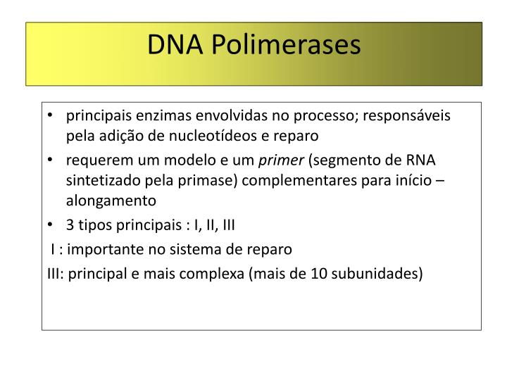 DNA Polimerases