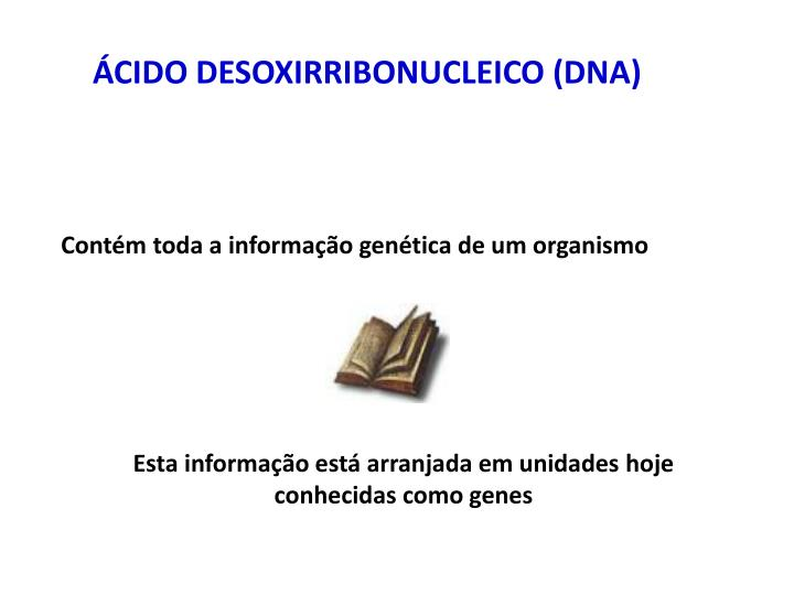 ÁCIDO DESOXIRRIBONUCLEICO (DNA)