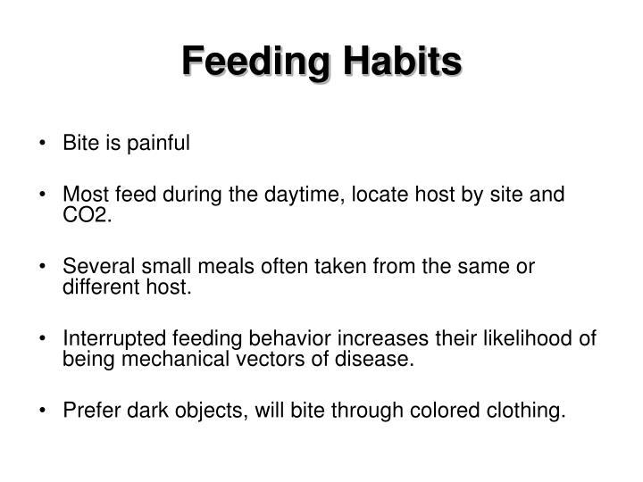 Feeding Habits