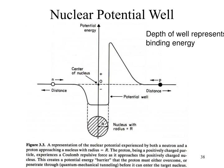 Nuclear Potential Well