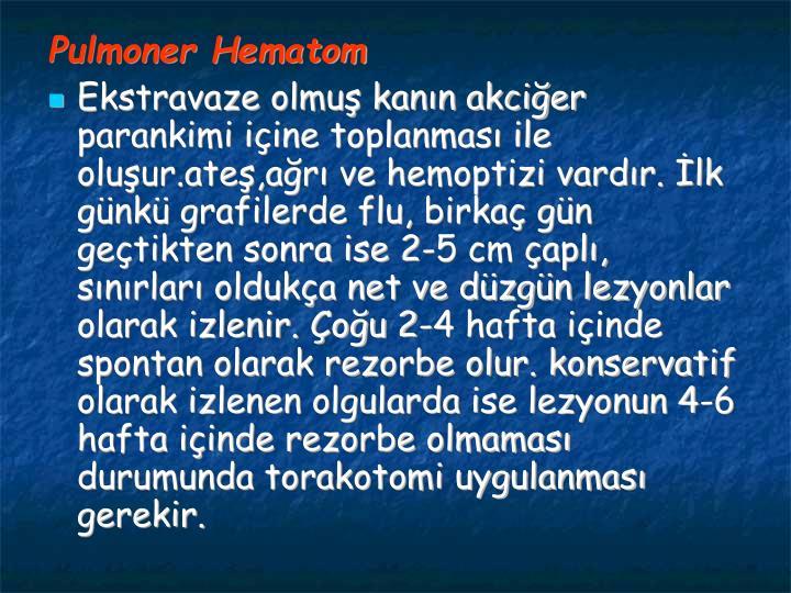 Pulmoner Hematom
