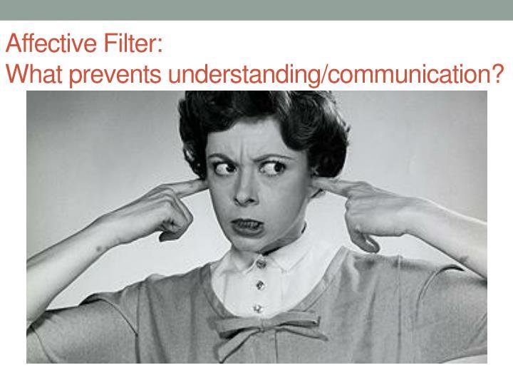Affective Filter: