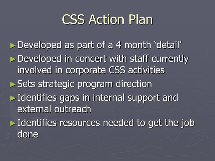 CSS Action Plan