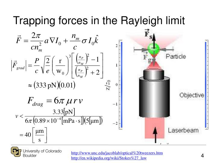 Trapping forces in the Rayleigh limit