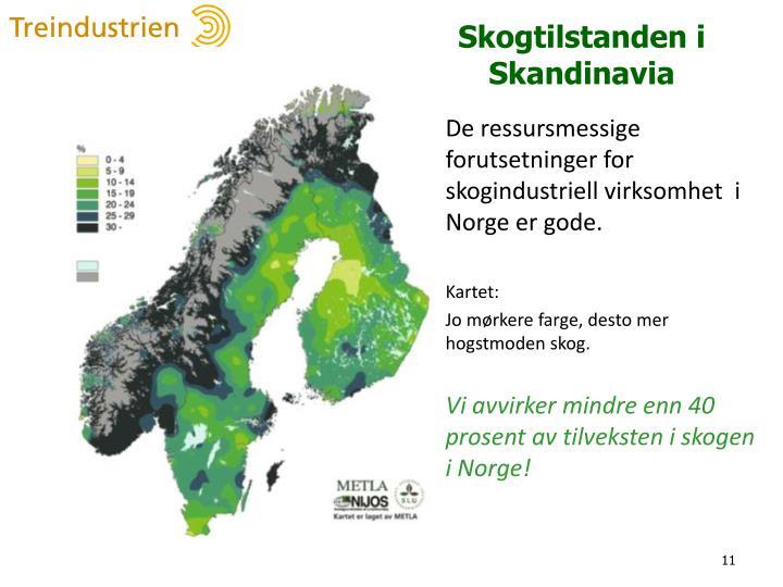 Skogtilstanden i Skandinavia