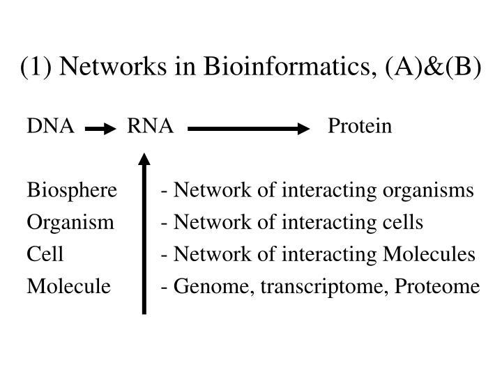 (1) Networks in Bioinformatics, (A)&(B)