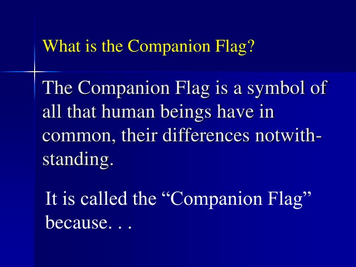 What is the Companion Flag?