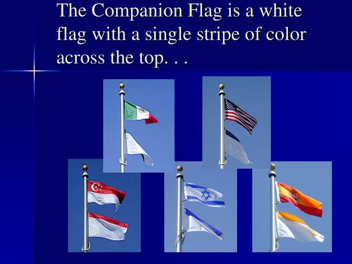 The Companion Flag is a white flag with a single stripe of color across the top. . .