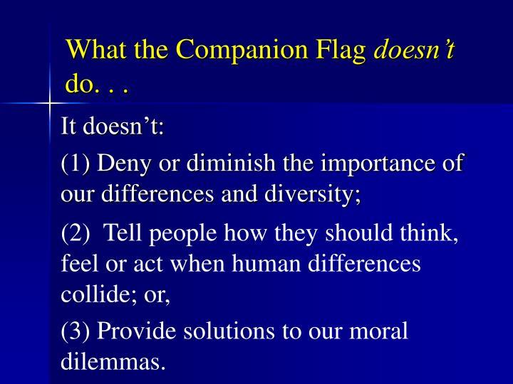 What the Companion Flag
