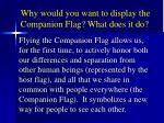 why would you want to display the companion flag what does it do