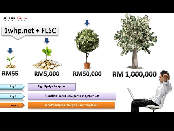 1whp.net + FLSC