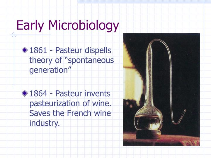 Early Microbiology