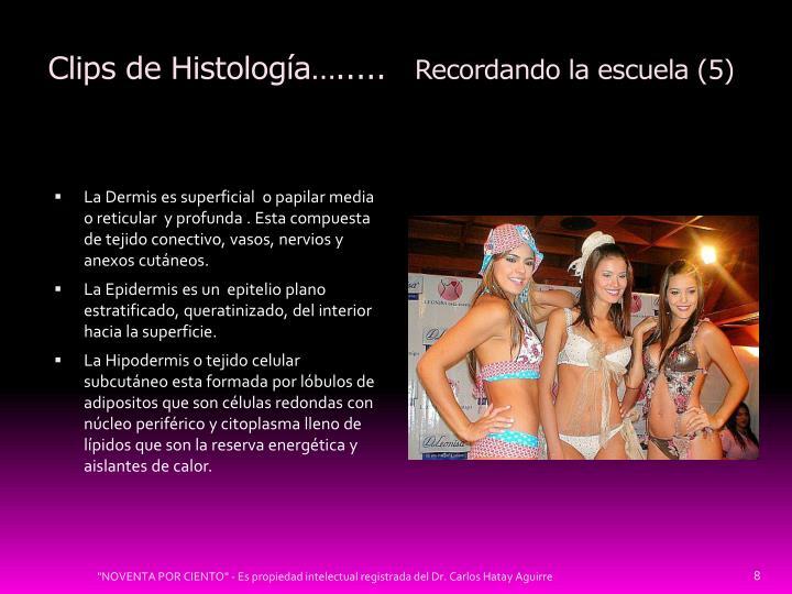 Clips de Histología….....