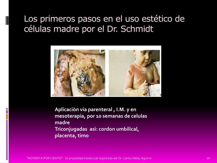 Los primeros pasos en el uso estético de células madre por el Dr. Schmidt