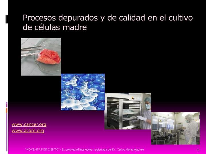 Procesos depurados y de calidad en el cultivo