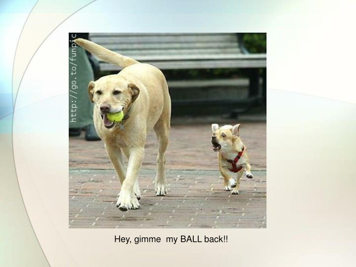 Hey, gimme  my BALL back!!