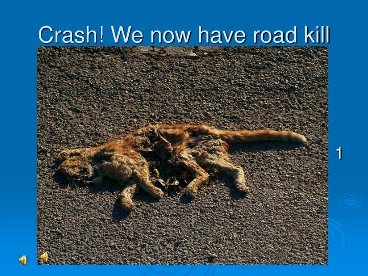 Crash! We now have road kill