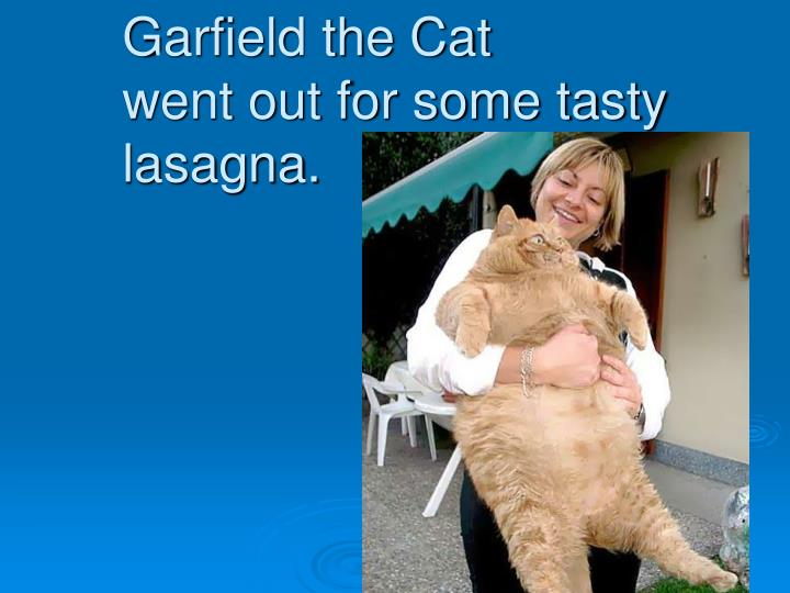 Garfield the cat went out for some tasty lasagna