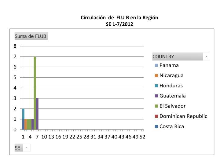 Circulación  de  FLU B en la Región